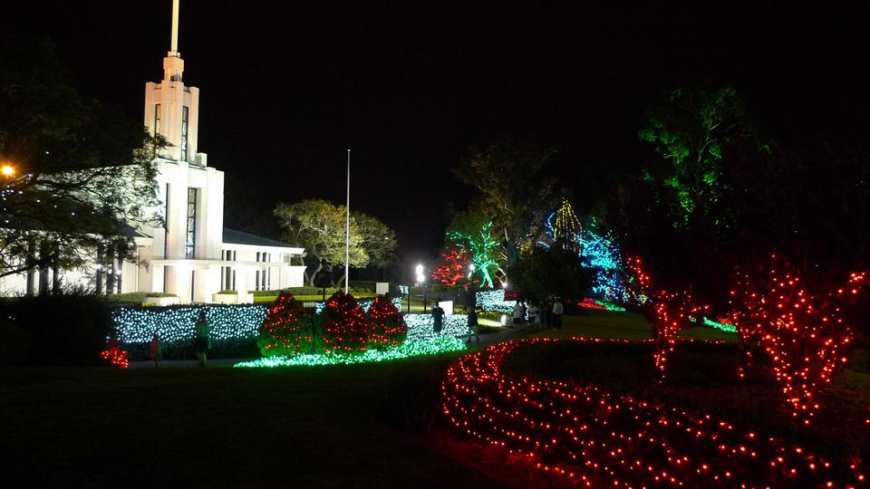 Sydney Temple with Christmas Lights