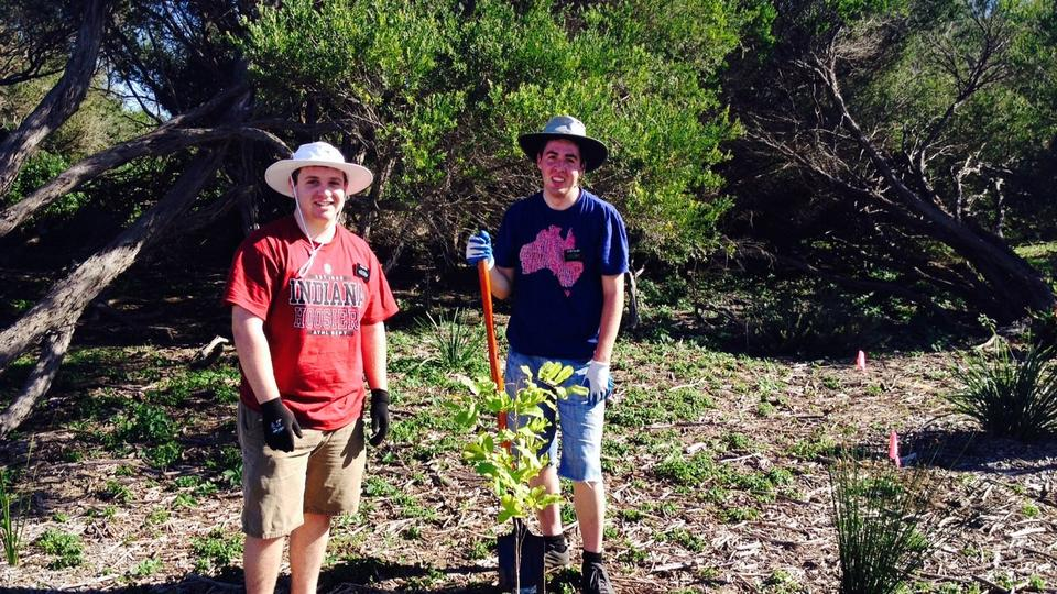 newcastle_Stake_Landcare_Project