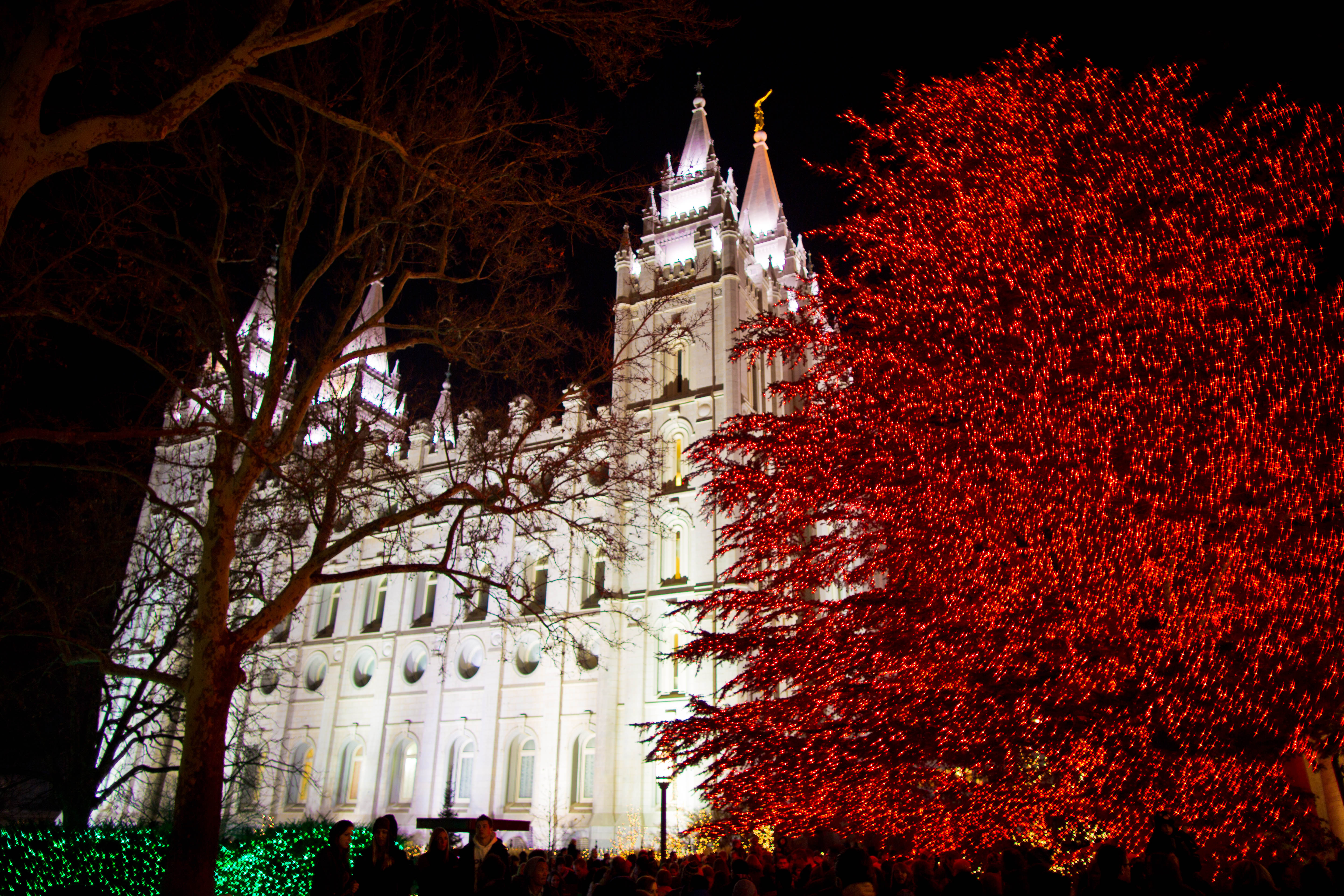Christmas Temple Square 2013 Cedar Lebanon2